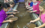 3rd Grade at a Gold Mine